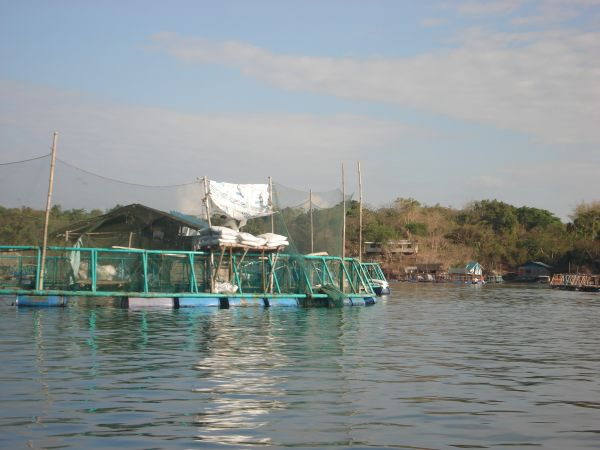 Aquaculture is one of the main sources of income here